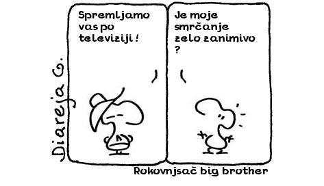 Rokovnjsač big brother