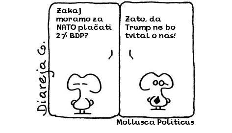 Mollusca Politicus